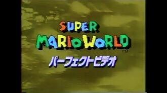 VHS 018 Super Mario World Perfect Video スーパーマリオワールド パーフェクトビデオ