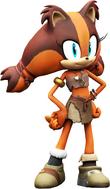 Sticks - Sonic Boom