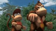 Subspace Diddy and Donkey Kong