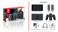 Nintendo Switch - Content - Grey