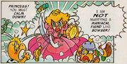 NPv42-supermario-comic