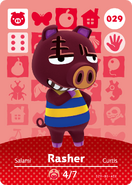 Amiibo - Card - Animal Crossing - Rasher