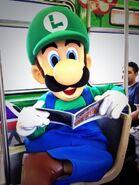 Luigi2013Chicago9