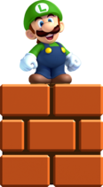 Luigi 12