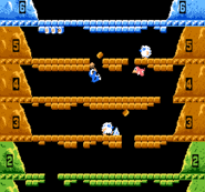 Gameplay - Ice Climbers