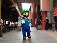Luigi2013Chicago8