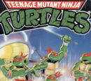 Teenage Mutant Ninja Turtles (NES)