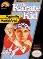 The Karate Kid NES (NA)