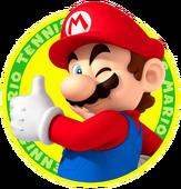 MTO Mario Icon