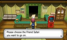 Friend Safari XY