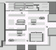 Pewter City RBY