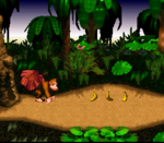 JungleHijinxs