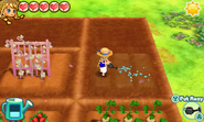 Story of Seasons - Trio of Towns - Screenshot 02