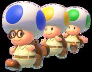 CapToad Toad Brigade