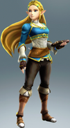 Hyrule Warriors: Definitive Edition, Zelda's Breath of the Wild costume
