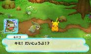 Pokemon Mystery Dungeon screenshot 4