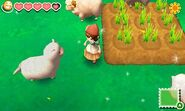Story of Seasons screenshot 6