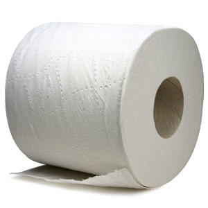 File:Toilet-paper.jpg