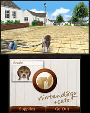 Walk on Nintendogs Cats