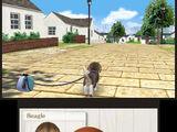 Nintendogs + Cats/Beta
