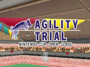 Agility trial open class screen