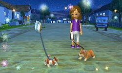 Nintendogs+Cats 003