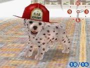 DalmatianFiremanHat