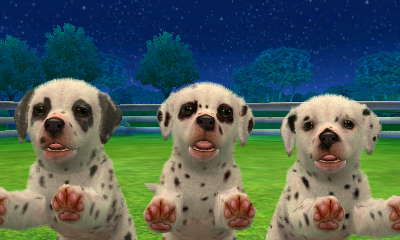 nintendogs dalmatian friends