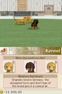 51418-Nintendogs - Chihuahua & Friends (v01) (J)-8