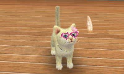 File:Nintendogs + Cats 238.JPG