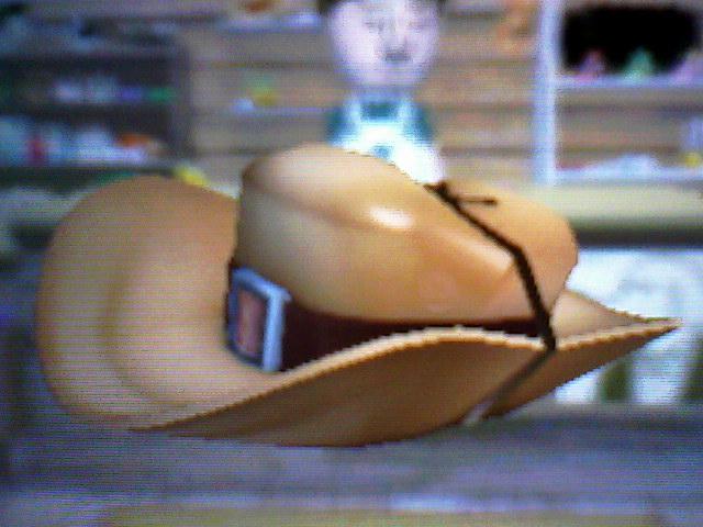 File:Brown safari hat.jpg