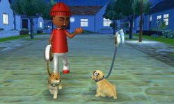 Nintendogs+Cats 002