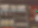 Long-Hair Shampoo