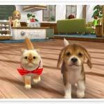 File:Pets at the vet.... (2).jpg