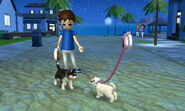 -Nintendogs Cats- Sasha