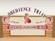 Obedience - beginner start
