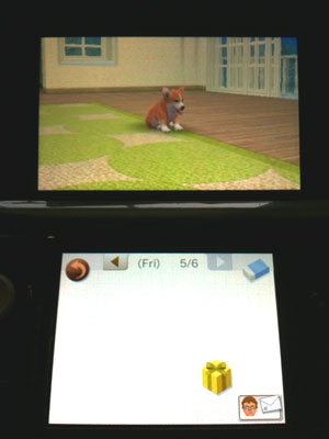 Nintendogs Journal
