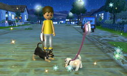 -Nintendogs Cats- 029