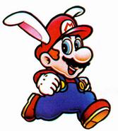 Rabbitmario