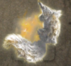 Fox Spirit's Pelt
