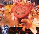 Heart-Shaped Box (single)