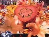 Heart-Shaped Box (single)