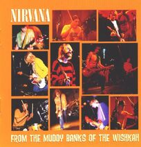 Nirvana-From-The-Muddy-Ba-228396