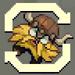 Ach icon spinviking 512x512