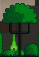 Small snot tree