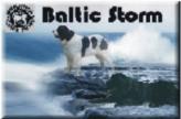 Baltic Storm logo