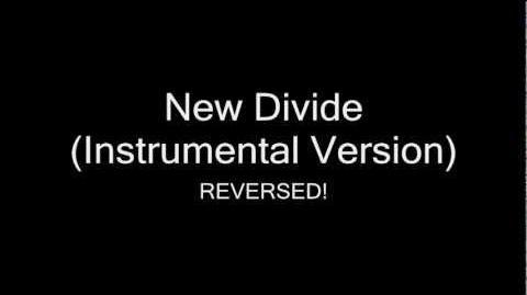 Reverse New Divide