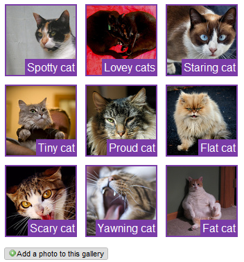Bestand:Customized photo gallery2.png
