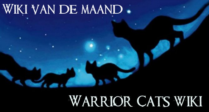 Featured-201408-Warriorcats