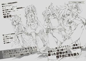 Light Novel Volume 10 Illustration - 17
